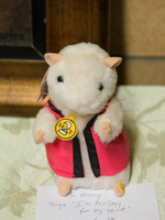 "Mr. Henry, a.k.a. Sexy Rex hamster singing ""I'm too sexy"""