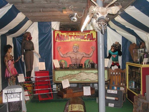 Interior Of American Dime Museum Ba T